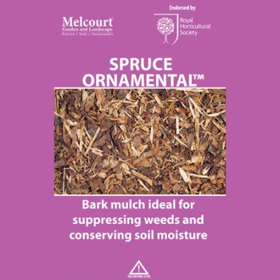 Melcourt Spruce Ornamenal